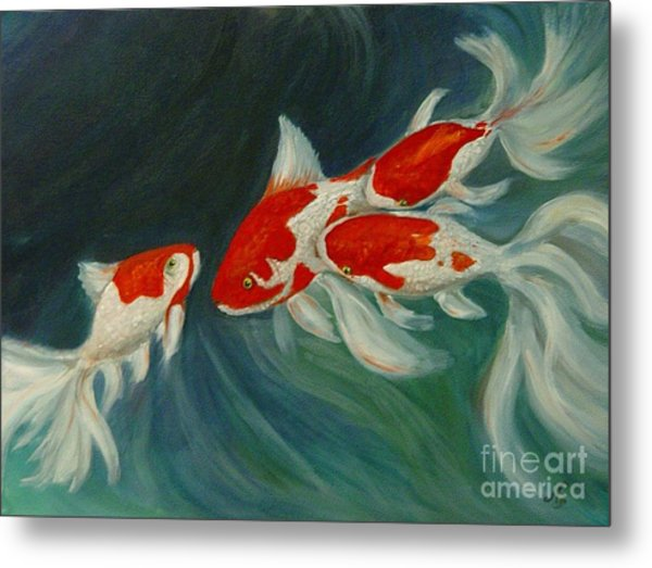 Fantail Koi Metal Print by Nancy Bradley