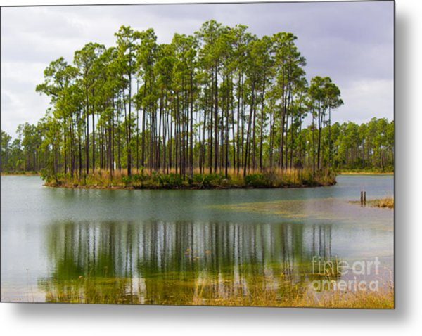 Fantasy Island In The Florida Everglades Metal Print