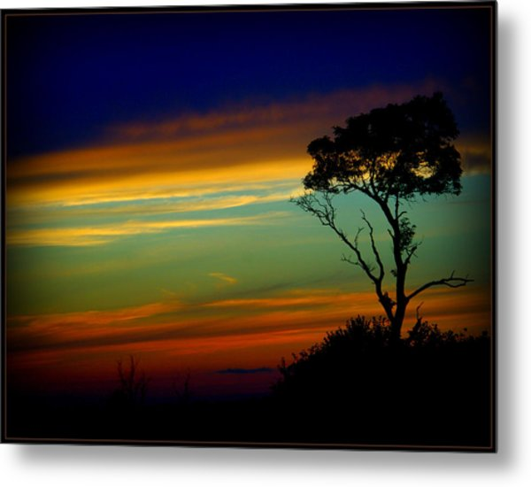 Farewell Sweet Sun Metal Print