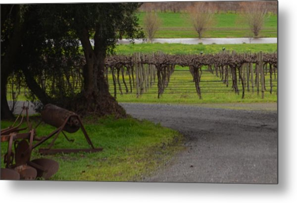 Farm And Vineyard Metal Print