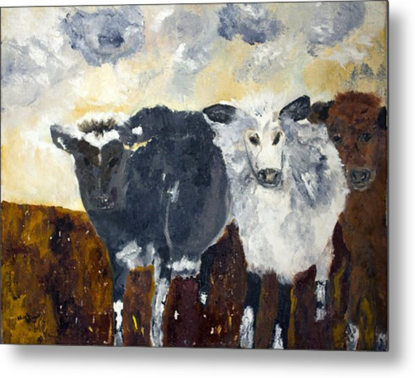 Farm Cows Metal Print