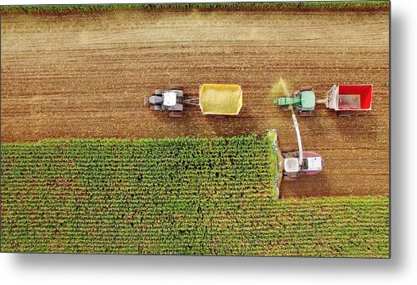 Farm Machines Harvesting Corn In September, Viewed From Above Metal Print by JamesBrey