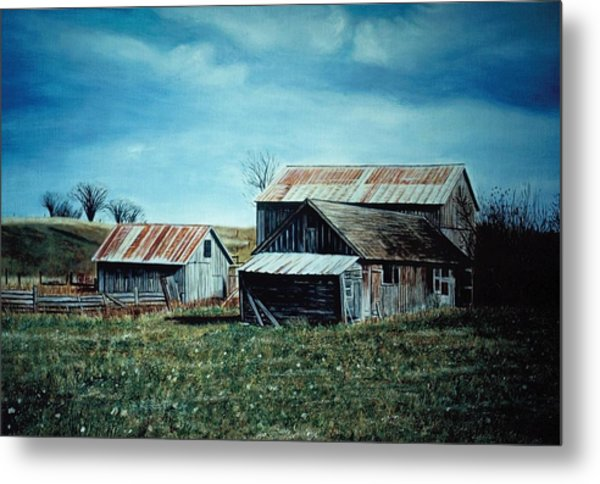 Farm Near Fenton Michigan Metal Print