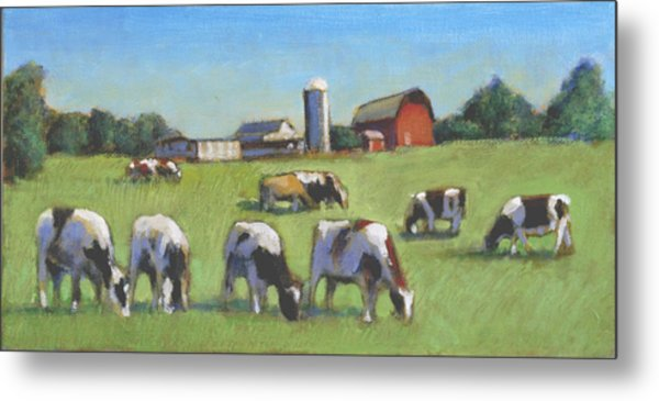Farming In The Dell Metal Print by David Zimmerman