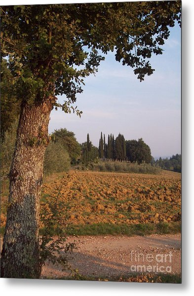 farming in Tuscany Metal Print