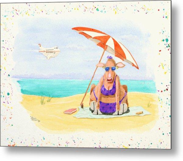 Fat Cow On A Beach 1 Metal Print