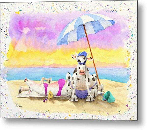 Fat Cows On A Beach 2 Metal Print