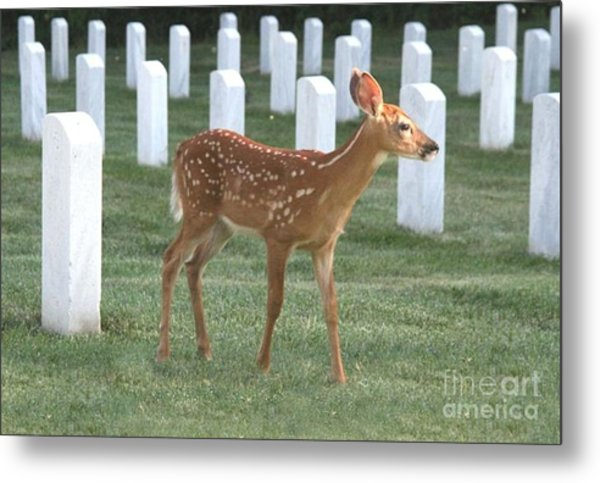 Fawn Pays Respects Metal Print
