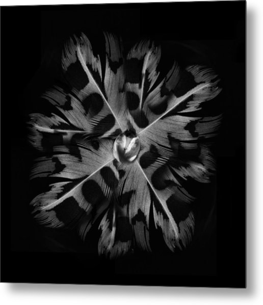 Feather Flower Metal Print