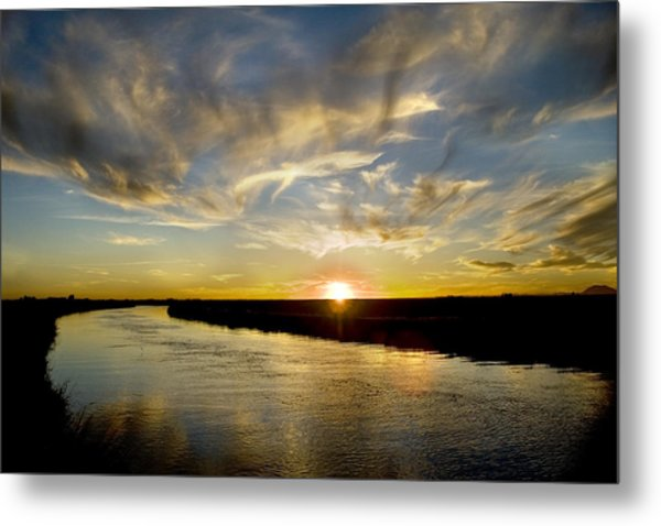 Feathered Sunset Metal Print