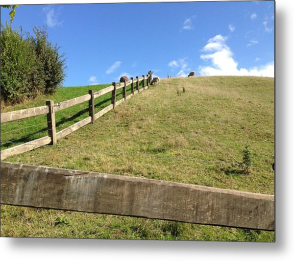 Fenced Pasture Metal Print by Ron Torborg