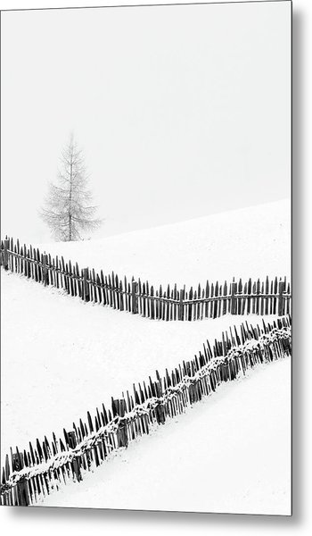 Fences: Playing With Lines Metal Print
