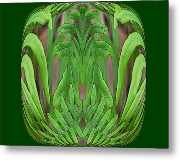 Fern Brain Metal Print