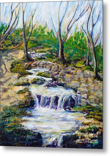 Ferndell Creek Noon  Metal Print by Randy Sprout