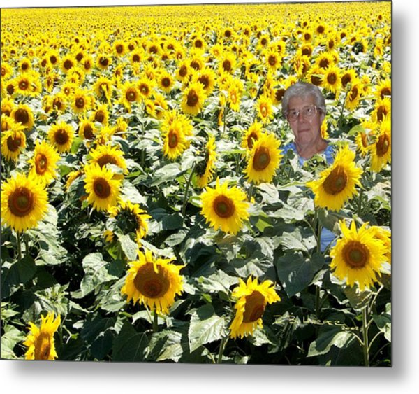 Field Of Mary Metal Print