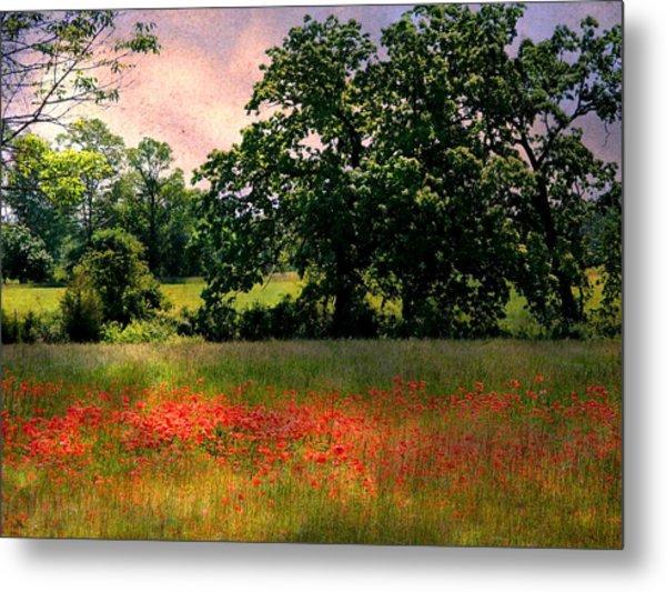 Field Of Poppies Metal Print by Anne McDonald