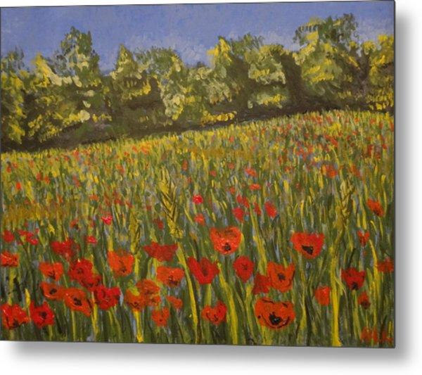 Field Of Poppies Metal Print by Paul Benson