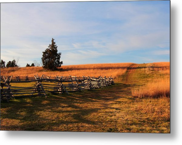 Field Of Shadows Metal Print