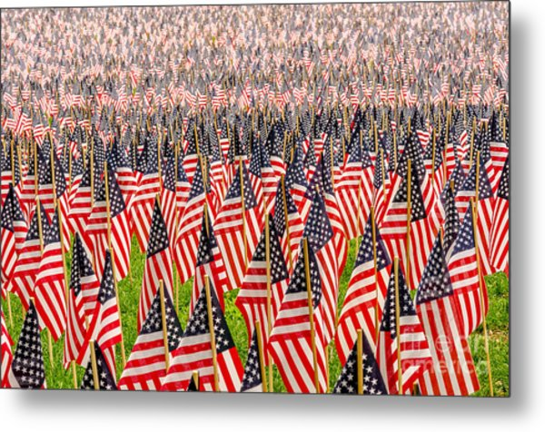 Field Of Us Flags Metal Print