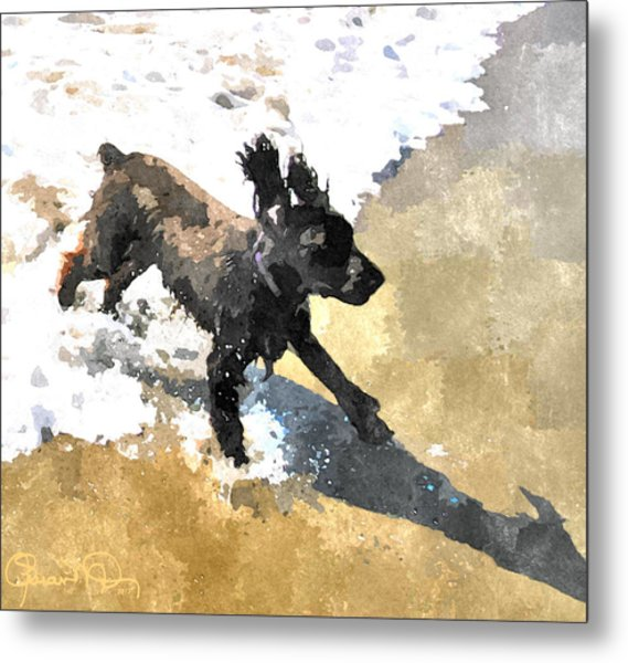 Field Spaniel Joy Metal Print