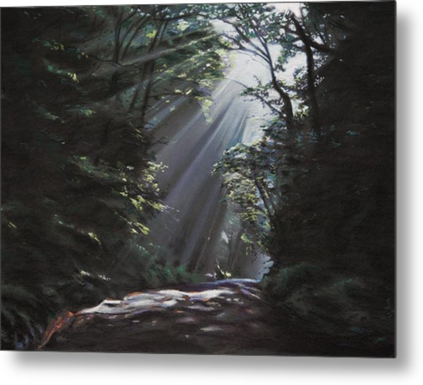 Filtered Light Metal Print