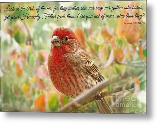 Finch With Verse New Version Metal Print