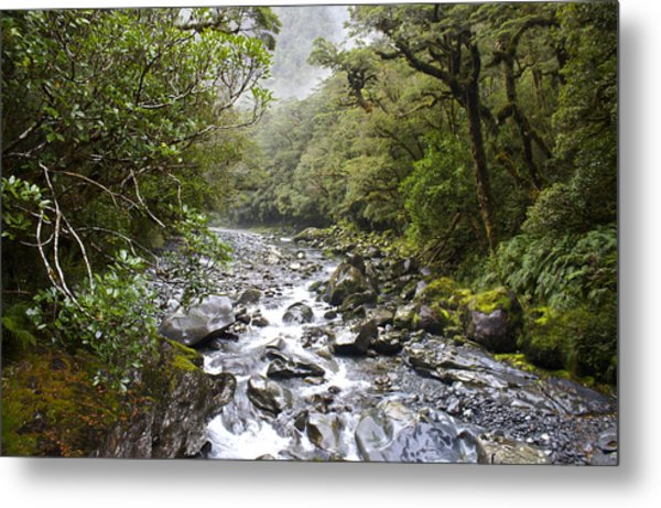 Fiordland National Park New Zealand Metal Print