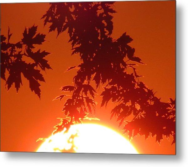 Fire Burning Sun Metal Print