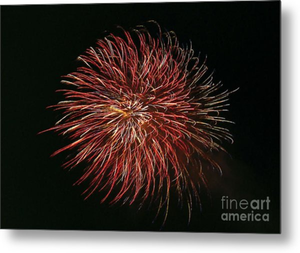 Fireworks At Night 5 Metal Print