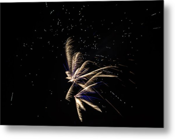 Fireworks - Dragonflies In The Stars Metal Print