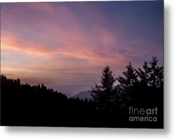 First Light At Newfound Gap Metal Print by Ricky Smith