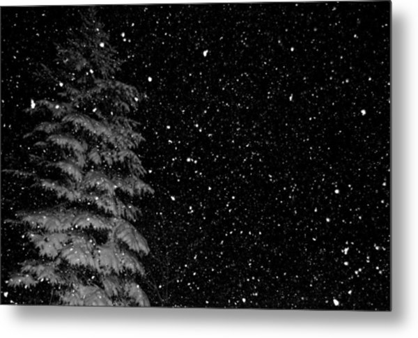 First Snow Metal Print by Denise Beverly