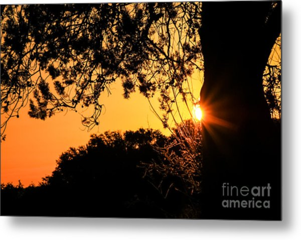 First Sunrise Of A New Year Metal Print