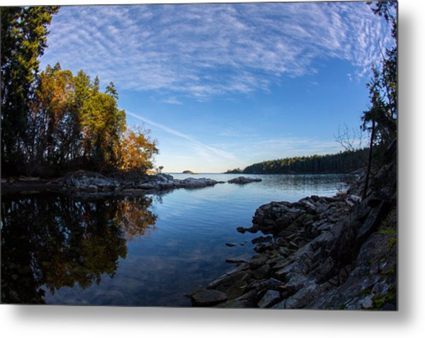 Fish Eye View Metal Print