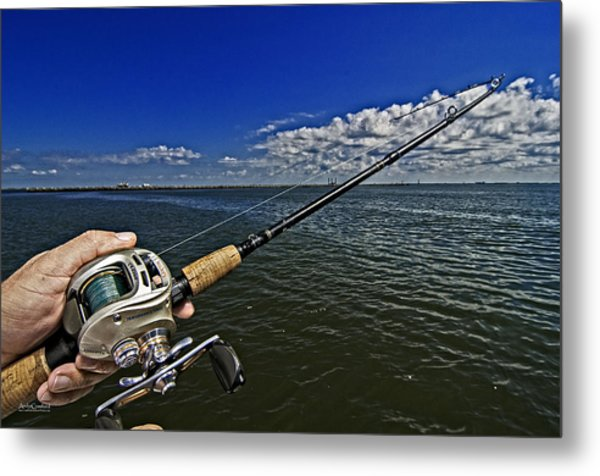 Fish On Metal Print