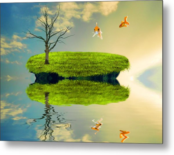 Fish Out Of Water Metal Print by Sharon Lisa Clarke