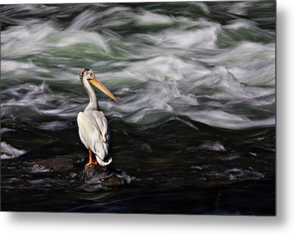 Fishing At Lehardy Rapids Metal Print