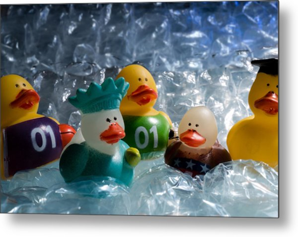 Five Ducks In A Row Metal Print