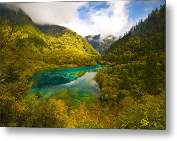 Five Flower Lake Metal Print