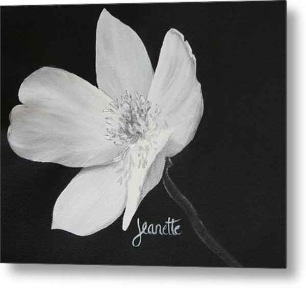 Five Petal Rose Metal Print