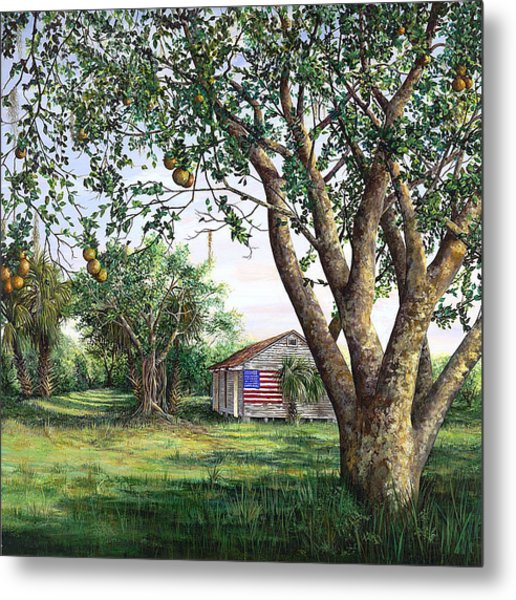 Flag House Metal Print