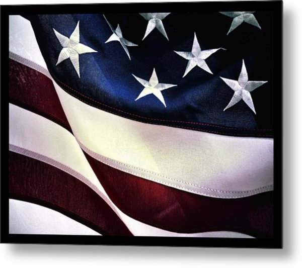 Flag Spotting At The Va Metal Print