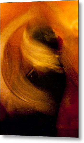 Flamenco Series 16 Metal Print