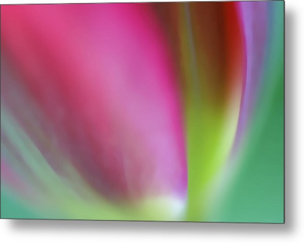 Flaming Tulip Metal Print