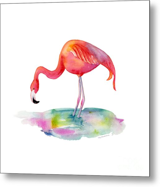 Flamingo Dip Metal Print