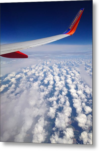 Flight Home Metal Print