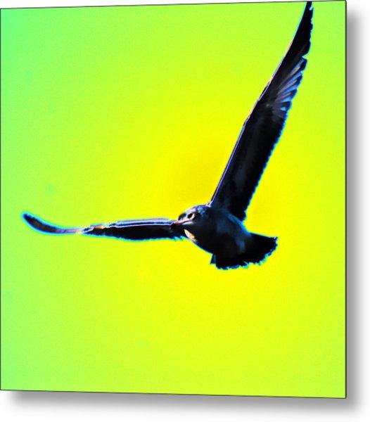 Flight Metal Print by Joe Bledsoe