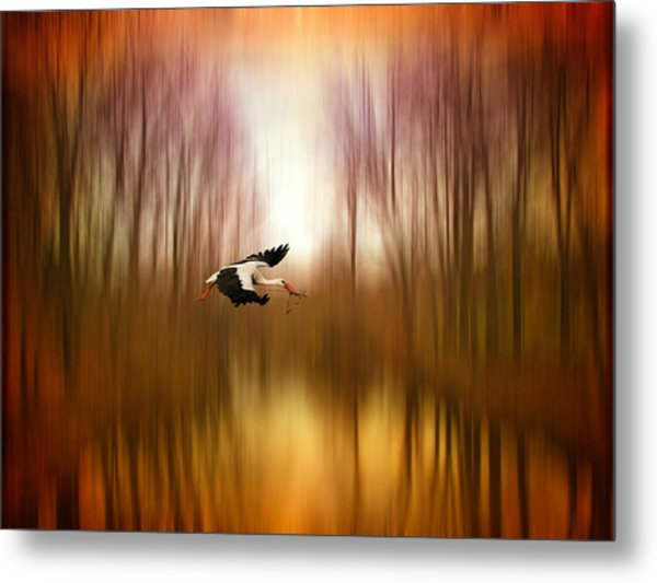 Flight Of Fancy Metal Print