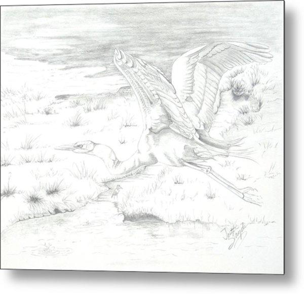 Flight Of Grace Metal Print