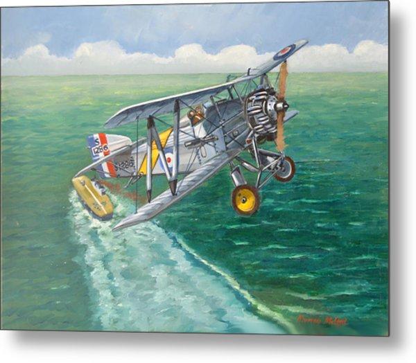 Flight Of The Flycatcher 2 Metal Print